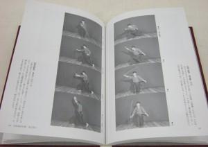 Iaijutsu Seigi pics