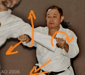 Nagamine Takayoshi demonstrating Ura-waza in Germany, 2006
