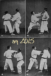 From Karate dō Taikan (1938) are 8 photos of Taira Shinken and Mabuni Kenwa with Bunkai techniques of the Kata Sōchin (I).