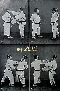 From Karate dō Taikan (1938) are 8 photos of Taira Shinken and Mabuni Kenwa with Bunkai techniques of the Kata Sōchin (II).