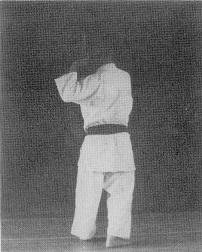 Sueyoshi0030