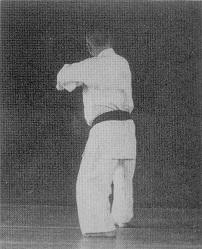 Sueyoshi0033