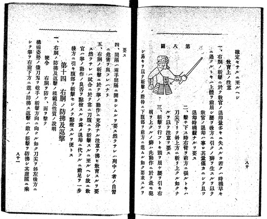 "Manual of Western-style military training (heishiki taisō 兵式体操). Since it usually referred to armed methods, Hanashiro's use of the term ""Karate"" might originally indeed simply referred to ""empty hands,"" and not to an age-old indigenous martial art."