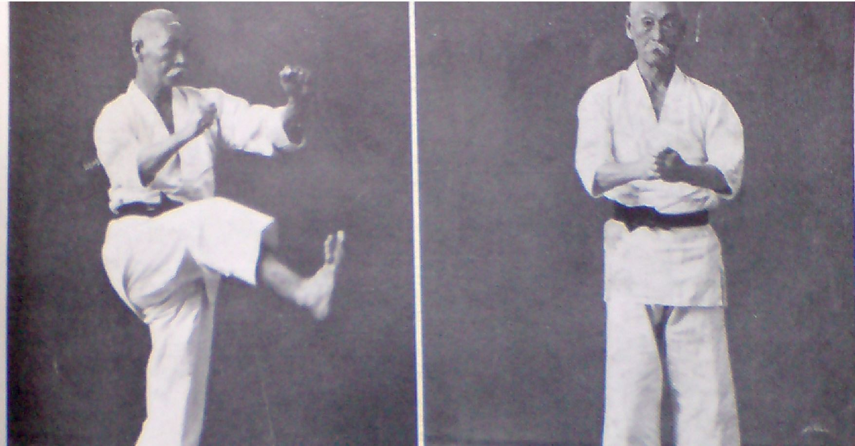 "Hanashiro Chōmo performing ""Jion"", from original 1938 edition of ""Karatedo Taikan"" of Nagamine Shoshin sensei. Photo by this author."